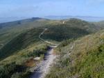 Ridge Trail: Montana de Oro state park.