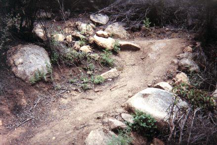 Upper Mount Woodson trail.